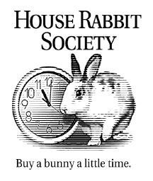 rabbit.org logo